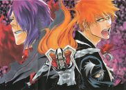 Bleach: Hell Verse - Cover